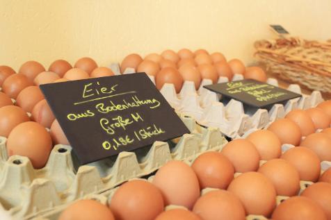 Melkhus Ardestorf - Regionale Produkte - Eier aus Bodenhaltung